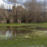 casa rural, Sierra de Prádena, Entorno, lago, iglesia